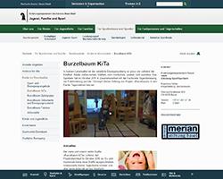 JFSBS_Burzelbaumprojekt